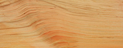 Textura de madera del aliso Imagen de archivo