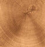 Textura de madera del corte Imagen de archivo libre de regalías