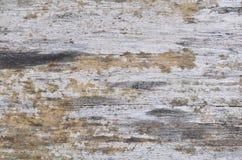 Textura de madera del fondo De madera natural Fotografía de archivo