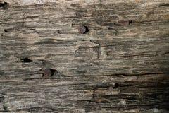 Textura de madera del fondo del viejo grunge Fotografía de archivo libre de regalías