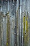 Textura de madera del fondo del piso del vintage Fotografía de archivo