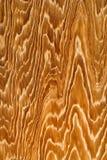 Textura de madera del grano Foto de archivo