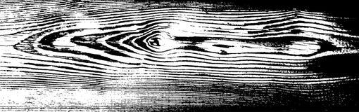 Textura de madera del grunge Fondo aislado de madera natural Ilustración del vector fotos de archivo