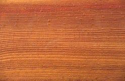 Textura de madera del pino con agua de los descensos Foto de archivo