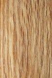 Textura de madera del roble. Foto de archivo libre de regalías