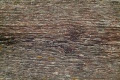 Textura de madera del tablón Imágenes de archivo libres de regalías