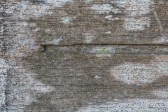 Textura de madera/fondo de madera de la textura Imagen de archivo libre de regalías