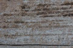 Textura de madera/fondo de madera de la textura Foto de archivo