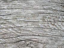 Textura de madera gris Fotografía de archivo libre de regalías