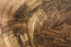 Textura de madera de la nuez del tono marrón foto de archivo