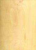 Textura de madera ligera Imagen de archivo libre de regalías