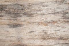 Textura de madera natural del árbol Imagen de archivo