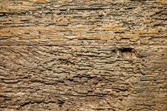 Textura de madera natural del marrón del extracto foto de archivo