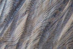 Textura de madera ondulada imágenes de archivo libres de regalías