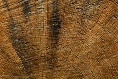 Textura de madera oscura Textura marrón de madera los paneles viejos del fondo Tabla de madera retra Fondo rústico Superficie col imagenes de archivo