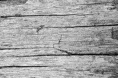 Textura de madera oscura Textura marrón de madera los paneles viejos del fondo Tabla de madera retra Fondo rústico Superficie col foto de archivo libre de regalías