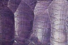 Textura de madera púrpura Imagenes de archivo