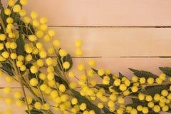 Textura de madera para el día de las mujeres Fotografía de archivo libre de regalías