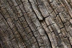 Textura de madera quemada. Foto de archivo