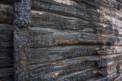 Textura de madera quemada Imagen de archivo
