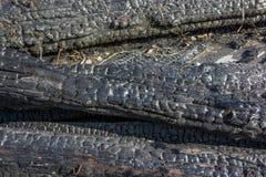 Textura de madera quemada Imagen de archivo libre de regalías