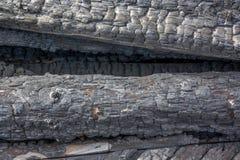 Textura de madera quemada Fotos de archivo libres de regalías