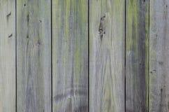 Textura de madera quemada del fondo de la pared Foto de archivo libre de regalías