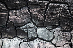 Textura de madera quemada Tablero carbonizado Fotos de archivo