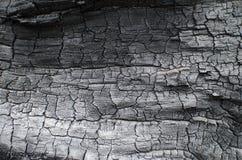 Textura de madera quemada Tablero carbonizado Imagen de archivo libre de regalías