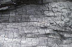Textura de madera quemada Tablero carbonizado Fotografía de archivo libre de regalías