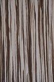 Textura de madera Rayas de Brown en el fondo blanco y rosado Madera exótica imágenes de archivo libres de regalías