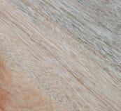 Textura de madera a servir como fondo Imágenes de archivo libres de regalías