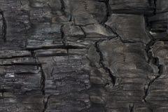 Textura de madera socarrada Imágenes de archivo libres de regalías