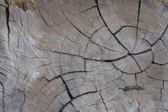 Textura de madera sucia foto de archivo