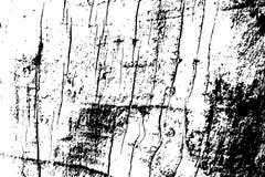 Textura de madera sucia Textura blanco y negro de la madera áspera Estructura apenada de la madera dura Fotografía de archivo libre de regalías