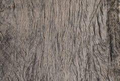 Textura de madera - textura - papel pintado - fondo Imagen de archivo libre de regalías