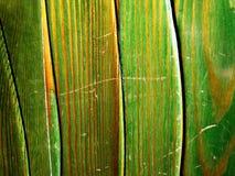 Textura de madera verde fotos de archivo