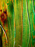 Textura de madera verde imagen de archivo libre de regalías