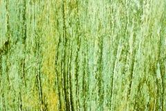 Textura de madera verde Imágenes de archivo libres de regalías