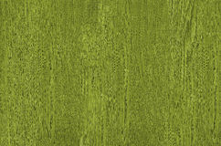 Textura de madera verde Imagen de archivo