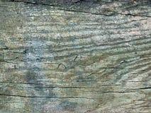 Textura de madera Stock Image