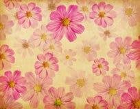 Textura de papel com as flores cor-de-rosa bonitas. Fotografia de Stock