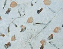 Textura de papel da fibra Imagem de Stock Royalty Free