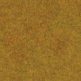 Textura de papel de madeira Fotografia de Stock