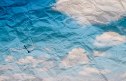 Textura (de papel) enrugada com voo do pássaro Imagem de Stock