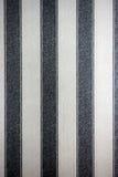 Textura de papel gris Imagen de archivo libre de regalías