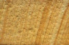 Textura de pedra 02 foto de stock