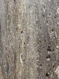 Textura de pedra Imagem de Stock Royalty Free