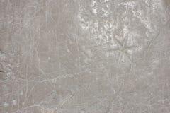 Textura de pedra branca Fotografia de Stock