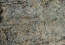 Textura de pedra da cadeira velha Foto de Stock